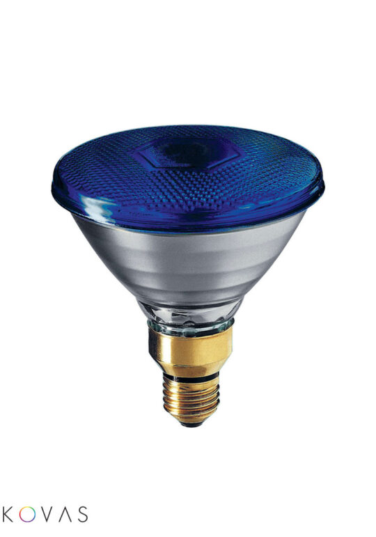 Philips-PAR38-E27-blue